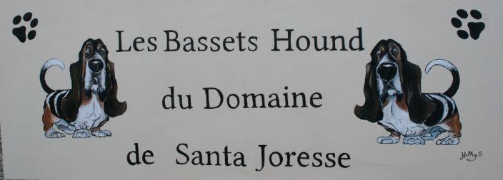 Domaine de Santa Joresse